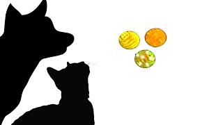 Download CAT GAMES - SUPER FELINE TOY BOX (CAT GAMES) Video