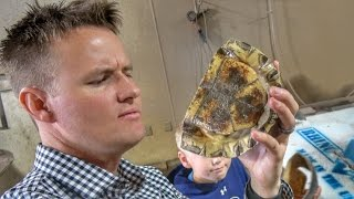 Download What's inside a Turtle Shell? Video