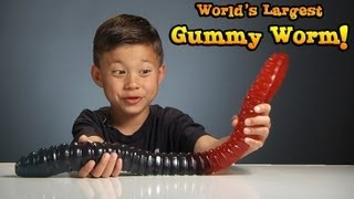 Download WORLD'S LARGEST GUMMY WORM vs. KID! Video