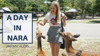 Download NARA Ft. Nara Park & Todaiji Temple | JAPAN VLOG Video