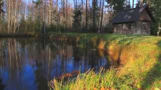 Download The Southern Estonian Countryside Video