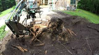 Download Digging out stumps with a mini excavator Video