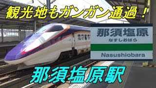 Download 【通過列車ばかり】東北新幹線「那須塩原」駅は通過率83.3%! Video