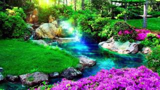 Download Relaxing Music for Stress Relief. Meditation Music for Yoga, Healing Music for Massage, Soothing Spa Video
