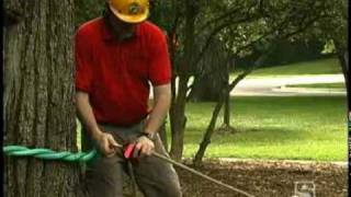 Download Tree Pulling Kit 5:1 Mechanical Advantage Video