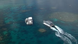 Download Protecting the Great Barrier Reef - Tourism Video