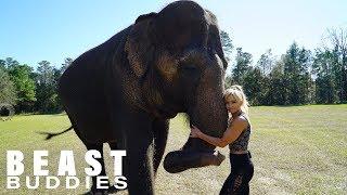 Download My Best Friend Is An Elephant | BEAST BUDDIES Video