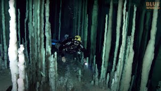 Download Cave Dive Training | JONATHAN BIRD'S BLUE WORLD Video