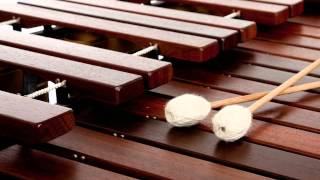 Download MARIMBAS DE CHIAPAS Rogmeld2012 Vive la Música !! Video
