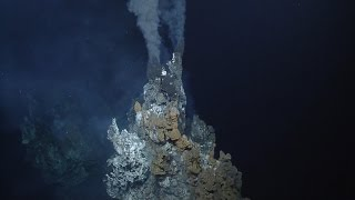 Download Giant Black Smoker Hydrothermal Vent | Nautilus Live Video