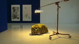 Download On Curation, Care, and Andrea Büttner's Moss Garden Video
