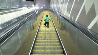 Download Escalators Video