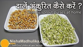 Download How to Sprout pulses at home | | दालों को अंकुरित करें । How to Sprout Lentils Video