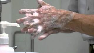 Download Correct Handwashing Technique Video