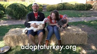 Download Harley Quinn and Kevin Smith Talk Turkey for Farm Sanctuary Video