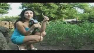 Download Te Levanta 07 Video