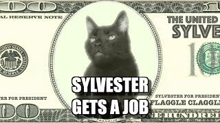 Download Talking Kitty Cat #67.5 - Sylvester Gets A Job Video