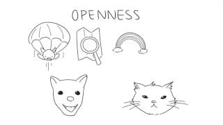 Download 5 Differences Between Cat and Dog People Video