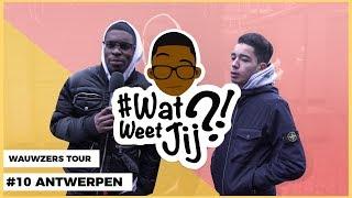 Download #WATWEETJIJ?! | #10 ANTWERPEN (WAUWZERS TOUR!) Video
