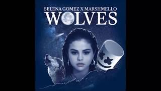 Download Wolves - Selena Gomez (Lyrics) Video