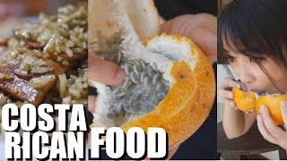 Download Trying Delicious Costa Rican Food 2016 Video