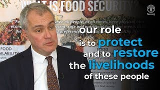 Download FAO launches $940 million appeal to meet urgent needs of food-insecure people in 30 countries Video