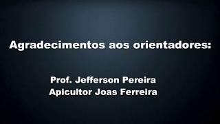 Download Coletor de apitoxina Video