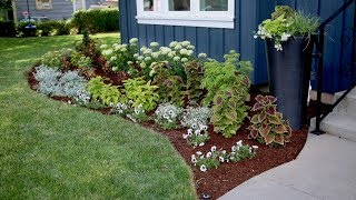 Download Flowerbed Makeover Start to Finish 🌿🌸 Video