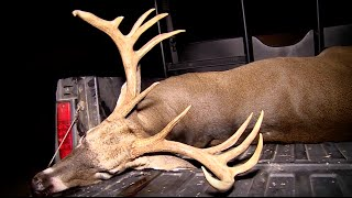 Download Early Season Southern Whitetails Video