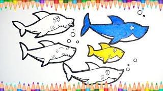 Download 상어가족 [ 아기 상어 ] 그림 그리기 / 색칠하기 - 미니TV Video
