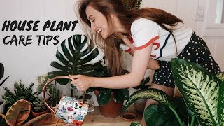 Download MY HOUSEPLANT COLLECTION (how to not kill your plants) Video
