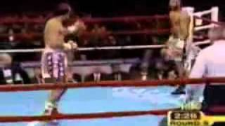 Download The fastest hands in boxing Roy Jones Jr Video