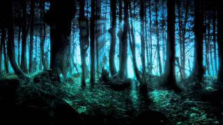 Download Frederic Chopin - Mysterious Forest Video