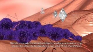 Download Nanodiamond as a Missile to Kill Cancer Cells (NDHU/ IR-Lab) Video