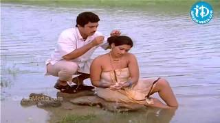 Download Thali Bottu Testanani Song - Swati Mutyam Movie | Kamal Haasan | Raadhika | Ilayaraja Video