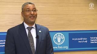 Download Declaração de Gilberto Silva, Ministro da Agricultura e Ambiente de Cabo Verde Video