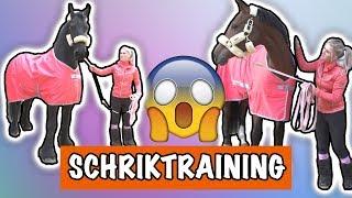 Download SCHRIK TRAINING MET EVE EN VITO! | PaardenpraatTV Video