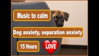 Download 15 Hours Of Music For Puppy and Dog Calming from Anxiety and Separation Anxiety Video