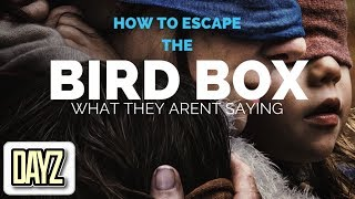 Download BIRD BOX: The Breakdown (What They aren't Saying) 2018 Video