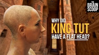 Download Why did King Tut have a flat head? Video
