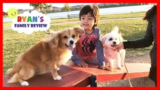 Download Kids fun playtime at playground and dog park with Ryan's Family Review Video