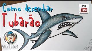 Download Como desenhar Tubarão estilo Cartoon passo a passo Video