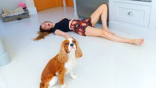 Download PETS REACT to us FAKING our DEATH! 🐶☠ Video