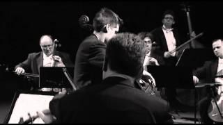 Download LUKA ŠULIĆ - Theme from Schindler's List Video