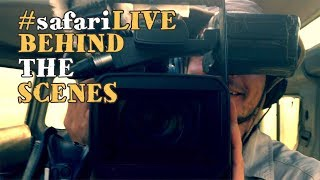 Download safariLIVE SILLY SEASONS 2017 Video