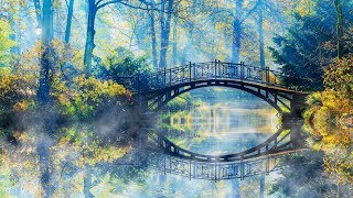 Download Peaceful Relaxing Instrumental Music, Clam Meditation Music, ″Bridges to Nature″ By Tim Janis Video