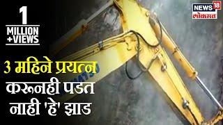 Download रत्नागिरीत मुंबई-गोवा महामार्गावर 3 महिने प्रयत्न करूनही पडत नाही 'हे' झाड,पहा हा स्पेशल रिपोर्ट Video