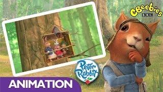 Download CBeebies: Peter Rabbit - Squirrel Nutkin Video