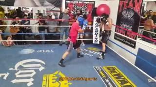 Download RARE sparring footage of Leo Santa Cruz prepping for Carl Frampton! Video