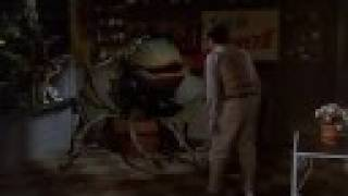 Download FEED ME SEYMORE - LITTLE SHOP OF HORRORS Video